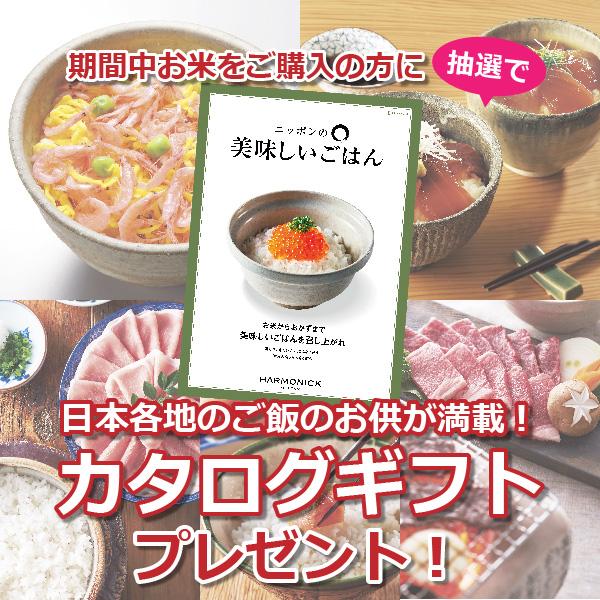 お米販売キャンペーン